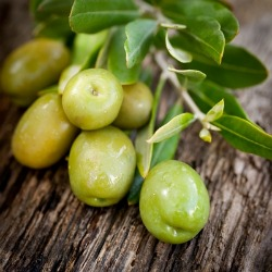 olives-on-wood-background