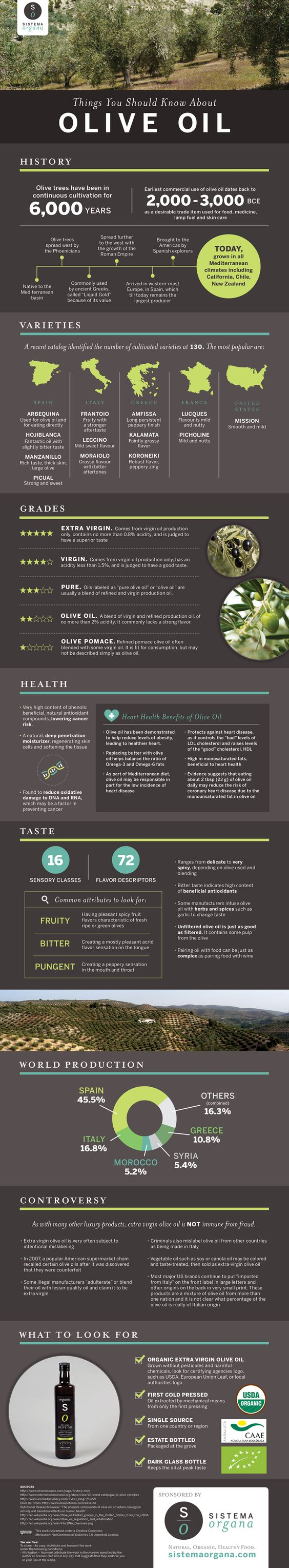 Things-You-Should-Know-About-Olive-Oil-Infographic.jpg