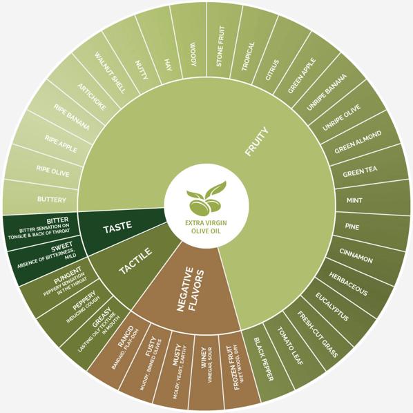 olive-oil-sensory-wheel