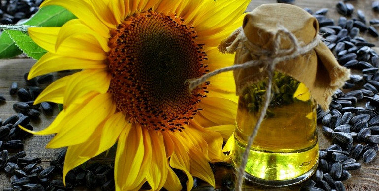 sunflower oil price point comparison